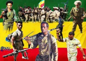 Amhara Militia